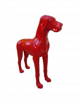 Dog Géant Drimmer
